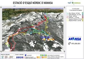 ARANSA-1